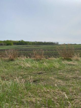 Main Photo: 57202 Hwy 44: Rural Sturgeon County Rural Land/Vacant Lot for sale : MLS®# E4226796