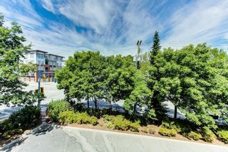 """Photo 24: 301 6390 196TH Street in Langley: Willoughby Heights Condo for sale in """"WILLOWGATE"""" : MLS®# R2608881"""