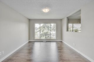 Photo 4: 17 MARTINDALE Boulevard NE in Calgary: Martindale House for sale : MLS®# C4121854