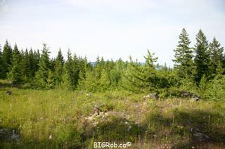 Photo 27: 190 SW Christison Road in Salmon Arm: Gleneden Vacant Land for sale : MLS®# 10118444