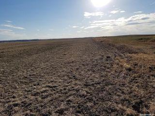 Photo 5: Rural address Rural Address in Tramping Lake: Lot/Land for sale (Tramping Lake Rm No. 380)  : MLS®# SK857141