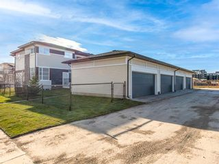 Photo 3: 66 Skyview Parade NE in Calgary: Skyview Ranch Row/Townhouse for sale : MLS®# A1053278