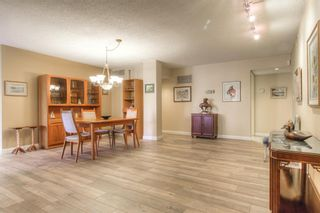 Photo 11: 301 1229 Cameron Avenue SW in Calgary: Lower Mount Royal Apartment for sale : MLS®# A1095141