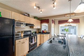 Photo 10: 311 BRINTNELL Boulevard in Edmonton: Zone 03 House for sale : MLS®# E4229582