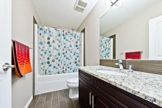 Photo 15: 142 SKYVIEW POINT CR NE in Calgary: Skyview Ranch House for sale : MLS®# C4226415