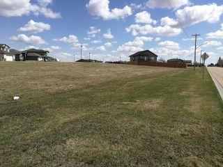 Photo 4: 5620 55 Avenue: Tofield Vacant Lot for sale : MLS®# E4234937