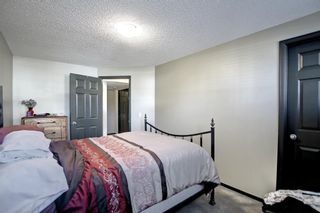 Photo 27: 2500 Sagewood Crescent SW: Airdrie Detached for sale : MLS®# A1152142