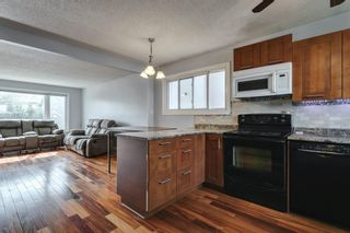 Photo 12: 4763 Rundlewood Drive NE in Calgary: Rundle Detached for sale : MLS®# A1107417