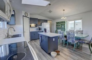 Photo 10: 97 1101 84 Street NE in Calgary: Abbeydale Mobile for sale : MLS®# A1036614