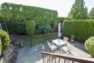 Photo 15: 18 2962 NELSON PLACE in Abbotsford: Central Abbotsford Townhouse for sale : MLS®# R2355812