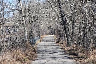 Photo 43: 180 INGLEWOOD Cove SE in Calgary: Inglewood Semi Detached for sale : MLS®# C4289561