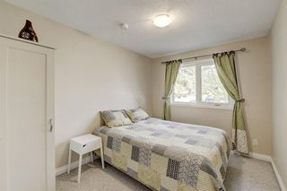 Photo 23: 4520 Namaka Crescent NW in Calgary: North Haven Detached for sale : MLS®# A1147081