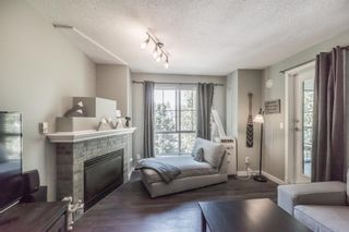 """Photo 14: 306 2388 WELCHER Avenue in Port Coquitlam: Central Pt Coquitlam Condo for sale in """"PARK GREEN"""" : MLS®# R2292110"""