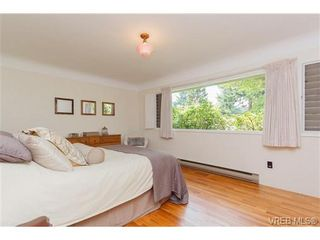 Photo 8: 4527 Duart Rd in VICTORIA: SE Gordon Head House for sale (Saanich East)  : MLS®# 674147