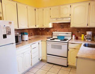 "Photo 8: 10013 132 Street in Surrey: Cedar Hills House for sale in ""CEDAR HILLS"" (North Surrey)  : MLS®# R2422513"