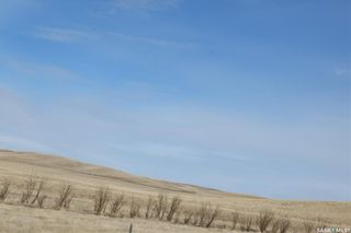 Photo 44: Dean Farm in Willow Bunch: Farm for sale (Willow Bunch Rm No. 42)  : MLS®# SK845280