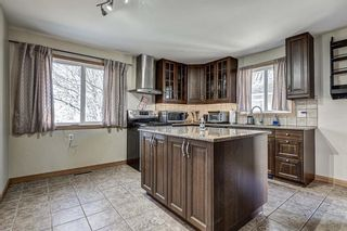 Photo 9: 126 Dovercliffe Way SE in Calgary: Dover Detached for sale : MLS®# A1082276