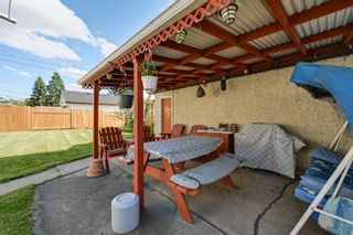 Photo 24: 3617 113 Avenue in Edmonton: Zone 23 House for sale : MLS®# E4261737