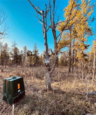 Photo 6: Over one acre lots in Hudson Bay: Lot/Land for sale : MLS®# SK850478