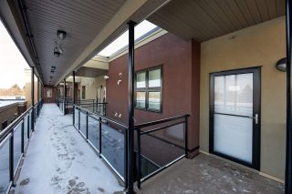 Photo 17: 414 10811 72 Avenue in Edmonton: Zone 15 Condo for sale : MLS®# E4227763