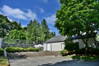 "Photo 12: 24 6617 138 Street in Surrey: East Newton Townhouse for sale in ""Hyland Creek"" : MLS®# R2182099"