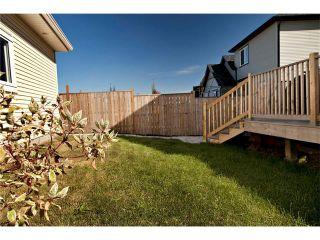 Photo 19: 102 AUTUMN Green SE in Calgary: Auburn Bay House for sale : MLS®# C4082157