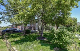 Photo 2: 506 Appledore Crescent in Mississauga: Cooksville House (Backsplit 5) for sale : MLS®# W4482006