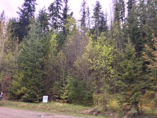 Photo 39: 3,4,6 Armstrong Road in Eagle Bay: Vacant Land for sale : MLS®# 10133907
