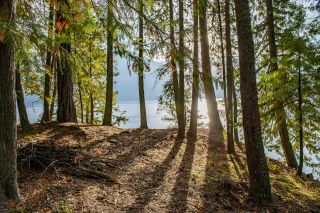 Photo 26: Lot 7879 HIGHWAY 31 in Kaslo: Vacant Land for sale : MLS®# 2461475