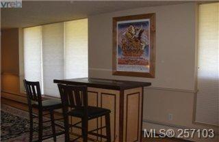 Photo 13: 101 1148 Goodwin St in VICTORIA: OB South Oak Bay Condo for sale (Oak Bay)  : MLS®# 490596