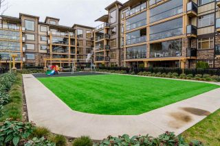 Photo 18: 204 8258 207A STREET in Langley: Willoughby Heights Condo for sale : MLS®# R2041625