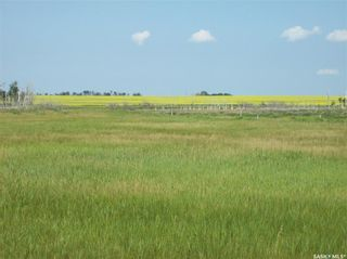 Photo 9: Eagle Creek Acreage 80 Acres in Asquith: Lot/Land for sale : MLS®# SK863384