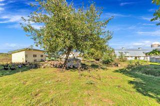 "Photo 12: 12591 209 Street in Maple Ridge: Northwest Maple Ridge House for sale in ""HAMPTON FARMS"" : MLS®# R2621090"