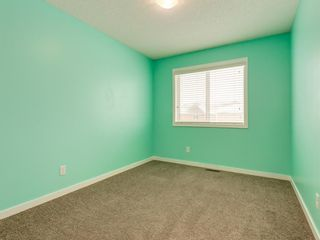 Photo 32: 107 Skyview Point Crescent NE in Calgary: Skyview Ranch Detached for sale : MLS®# A1048632