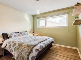 Photo 14: 22 Chancellor Way NW in Calgary: Cambrian Heights Detached for sale : MLS®# A1100498