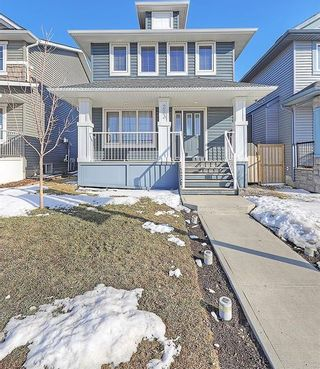 Photo 39: 223 EVANSTON Way NW in Calgary: Evanston House for sale : MLS®# C4178765