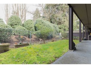 """Photo 19: 214 34909 OLD YALE Road in Abbotsford: Abbotsford East Townhouse for sale in """"The Gardens~"""" : MLS®# R2254662"""