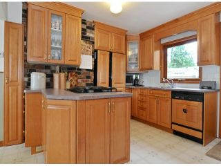 """Photo 10: 4627 198A Street in Langley: Langley City House for sale in """"MASON HEIGHTS"""" : MLS®# F1425848"""