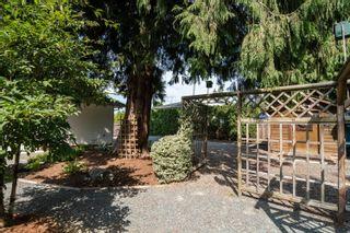 Photo 31: 10044 PARKWOOD Drive in Rosedale: Rosedale Popkum House for sale : MLS®# R2613206