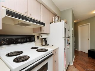Photo 7: 311 2560 Wark St in VICTORIA: Vi Hillside Condo for sale (Victoria)  : MLS®# 811579