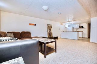 Photo 21: 56146 MEADOWVALE Road in Springfield Rm: RM of Springfield Residential for sale (R04)  : MLS®# 202107608