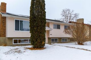 Photo 3: 3807 49 Street NE in Calgary: Whitehorn Detached for sale : MLS®# A1066626
