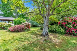 Photo 3: 4401 Colleen Crt in : SE Gordon Head House for sale (Saanich East)  : MLS®# 876802