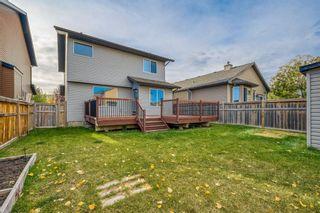 Photo 19: 821 Auburn Bay Boulevard SE in Calgary: Auburn Bay Detached for sale : MLS®# A1064937