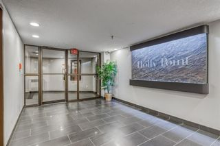 Photo 31: 402 320 Meredith Road NE in Calgary: Crescent Heights Apartment for sale : MLS®# A1143328