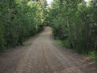 Photo 47: 83 474032 RGE RD 242: Rural Wetaskiwin County House for sale : MLS®# E4256413