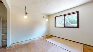 Photo 14: 41772 GOVERNMENT Road in Squamish: Brackendale House for sale : MLS®# R2603967