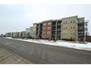 Photo 50: 5501 11811 LAKE FRASER DR SE in Calgary: Lake Bonavista Condo for sale : MLS®# C4099993