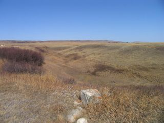 Photo 10: 1 Pine Coulee Ranch in Rural Willow Creek No. 26, M.D. of: Rural Willow Creek M.D. Residential Land for sale : MLS®# A1090094
