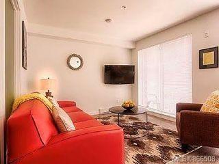 Photo 21: 317 517 Fisgard St in : Vi Downtown Condo for sale (Victoria)  : MLS®# 866508